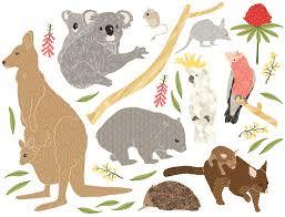 Image result for australian animals for kids