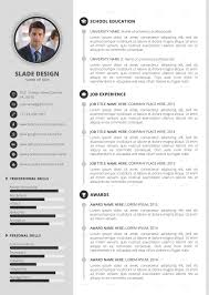 Best Professional Cv Templates For 2018 – Down Town Ken More