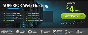 website hosting fees