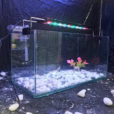 Bể cá mini 40cm lọc đèn led 3 chế độ SÁNG - bể cá để bàn - combo bể cá mini  [ĐƯỢC KIỂM HÀNG] 37529924 - 37529924 | Chăm sóc cá và bể thủy sinh khác