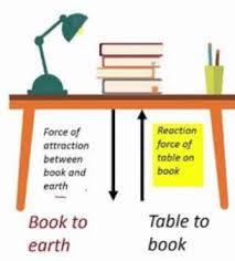 newton s third law of motion exles