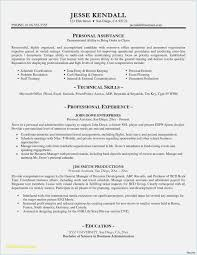 Free Download 52 Resume Template Format Professional Template Example