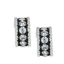 montana silversmith Crystal Shine Small Hoop ... - Amazon.com