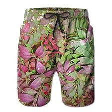 Burning Bush Size Chart Poouytger Mens Casual Shorts Swim Trunks Summer Beach Pants