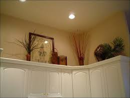 Kitchen:Fluorescent Light Covers For Kitchen Virtual Window For Windowless  Office Sky Ceiling Tiles Diy