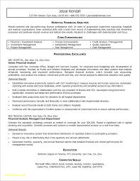 Fund Analyst Resume Finance Resume Format Experienced Luxury Data