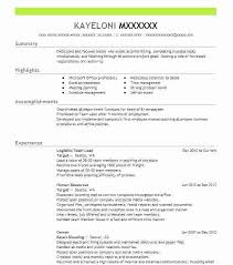 team leader cv examples resume for team leader in bpo facility lead maintenance resume