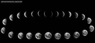 Lunar Cycles The 8 Phases Zodiac Arts Zodiac Arts