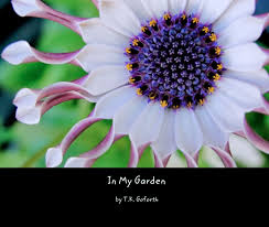 view in my garden 10x8 coffee table book by t k goforth