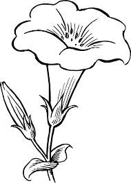 black and white flower border clipart flower black white line art in clipart black and white