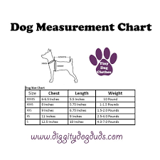 Teacup Maltese Weight Chart A300 New Lt Weight Print Sweaters Xxxs Xxs Long Teacup Puppy Chihuahua Chiweenie Toy Poodle Maltese Yorkie Bichon Frise Schnauzer Kitten