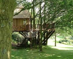 Tree Houses You Can Spend The Night Photos  Architectural DigestTreehouse Hotel Hampshire