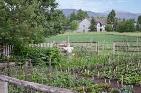 Kitchen Garden Farm Filekitchen Garden And Scarecrow Tinsley Living Farm Museum