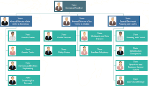 Company Org Chart What Is Functional Org Chart Org Charting