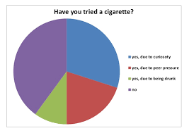 American Ethnic Groups Pie Chart Pie Chart Questionnaire Results