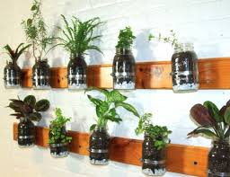 Model Summer Rayne Oakes shows you how to make a mason jar herb garden for your  kitchen wall