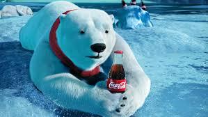 Image result for polar bears