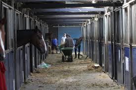 De Box Van Een Paard Is óók Zijn Toilet Manege Ruiter Bond