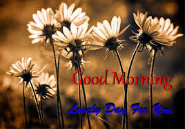 send new good morning messages