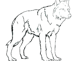 Wolf Coloring Pages Coloring Pages Of Wolves Wolf Coloring Wolf
