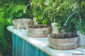 tropical view row of wooden sinks faucet in japanese design with vertical plants wall background