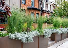 a toronto front yard gains style and a