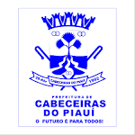 imagem de Cabeceiras do Piauí Piauí n-6