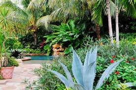 Small Picture Tropical Landscape Garden Design Miami Knoll Landscape