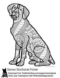 Small Picture COLORING BOOK German shorthaired pointer Pointers and Dog