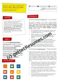 18 Awesome Resume Professional Writers Reviews Wtfmaths Com