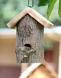 bluebird house plans easy awesome easy bluebird house plans how to build a bluebird house bluebird