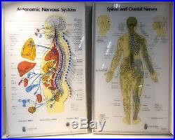 Vintage Medical Equipment Autonomic