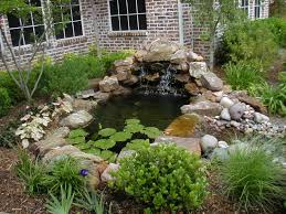 Pictures Of Small Garden Ponds And Waterfalls The Garden