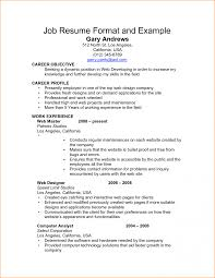 Perfect Job Resume Format A Professional For Freshers