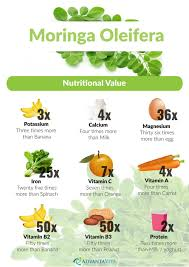 Moringa Comparison Chart Welcome To Ankh Lp Moringa Tablets Ankh Life Products