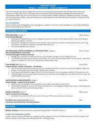 Telecommunications Project Manager Resume Sample Coordinator Cv Job