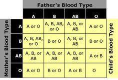 Blood Type Offspring Chart 15 Best Blood Types Images Blood Blood Groups Medical