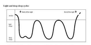 Baby Sleep Cycle Chart Normal Sleep Patterns Kidshealth Nz