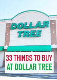 what to at dollar tree