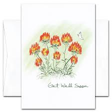 Boxed Get Well Cards For Business Or Health Care Butterfly