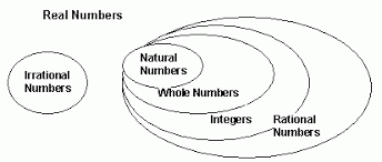Real Numbers Chart Worksheet Type Of Numbers Natural Whole Integers Rational
