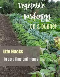 inexpensive vegetable garden s