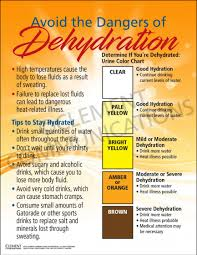 Dehydration Chart Urine Color Dehydration Tracking Poster