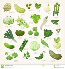vegetables names list. Perfect List Green Fruit And Vegetables With Names With Vegetables Names List