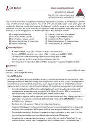 Server And Bartender Resume Bartender Server Resume Professional Mix