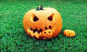 Carving Pumpkins Patterns Cool Inspiration