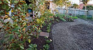 flowering border garden guide