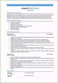 It Project Manager Resume Sample Original It Manager Resume