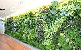 creative of green wall vertical garden artificial bunnings