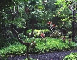 Small Picture 24 exceptional Tropical Garden Design Made Wijaya Books izvipicom